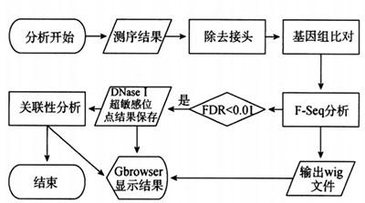 DNase I超敏感位点的定位研究原理和方法