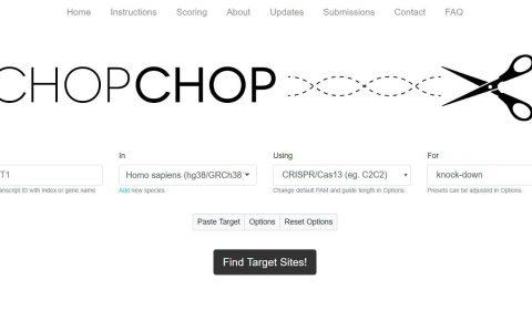 CRISPR Cas9靶点引物设计网站
